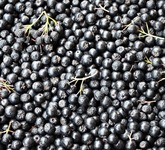 Aronia Chokeberry Fruit Powder
